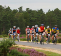 The New Forest Rattler, The Original New Forest Sportive