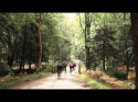 Wiggle New Forest 100 Sportive 2013