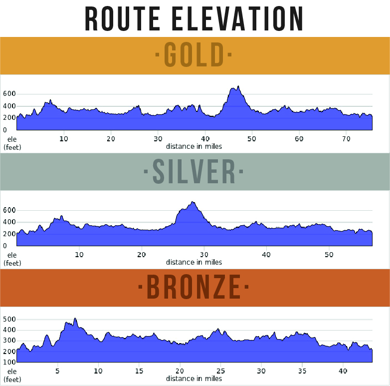 Bostin' Chase Sportive - elevation profiles