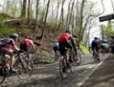 Cyclosport.org REVIEW: Tour of Flanders Sportive